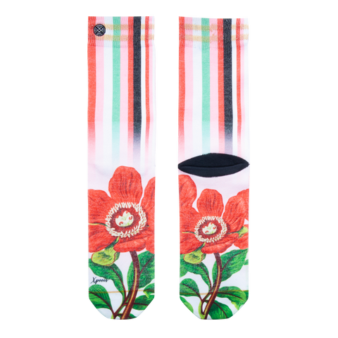 Xpooos Short Sock - Bloom On