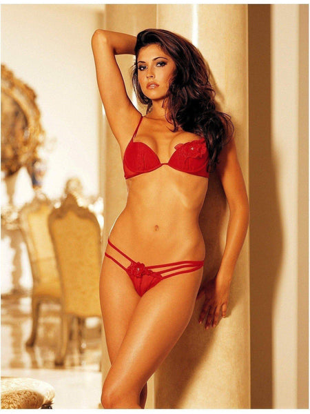Shirley of Hollywood IS-SOH-20174 Set 2 pezzi Sexy stretch Mesh Venice applique IS-Shirley of Hollywood
