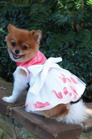 The Flora Flower Petal Dog Dress - Marry Me Wedding Accessories & Gifts