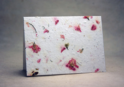 Seeded Paper Note Cards