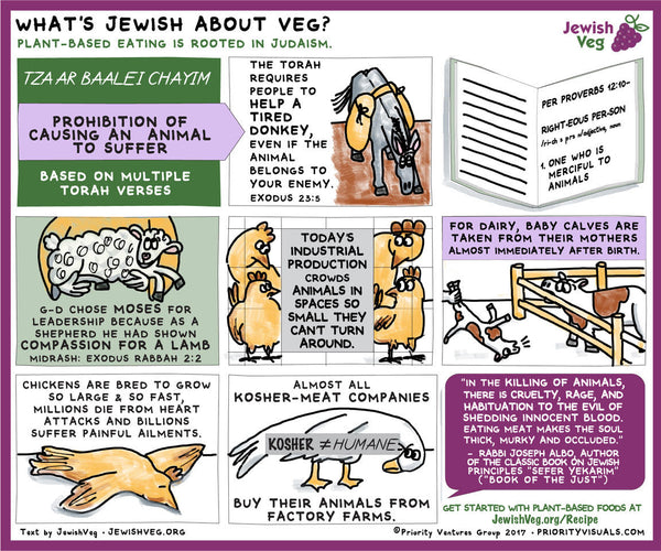 Infographics: The Jewish Basis of an Animal-Free Diet