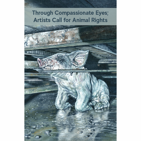Through Compassionate Eyes Art Catalogue