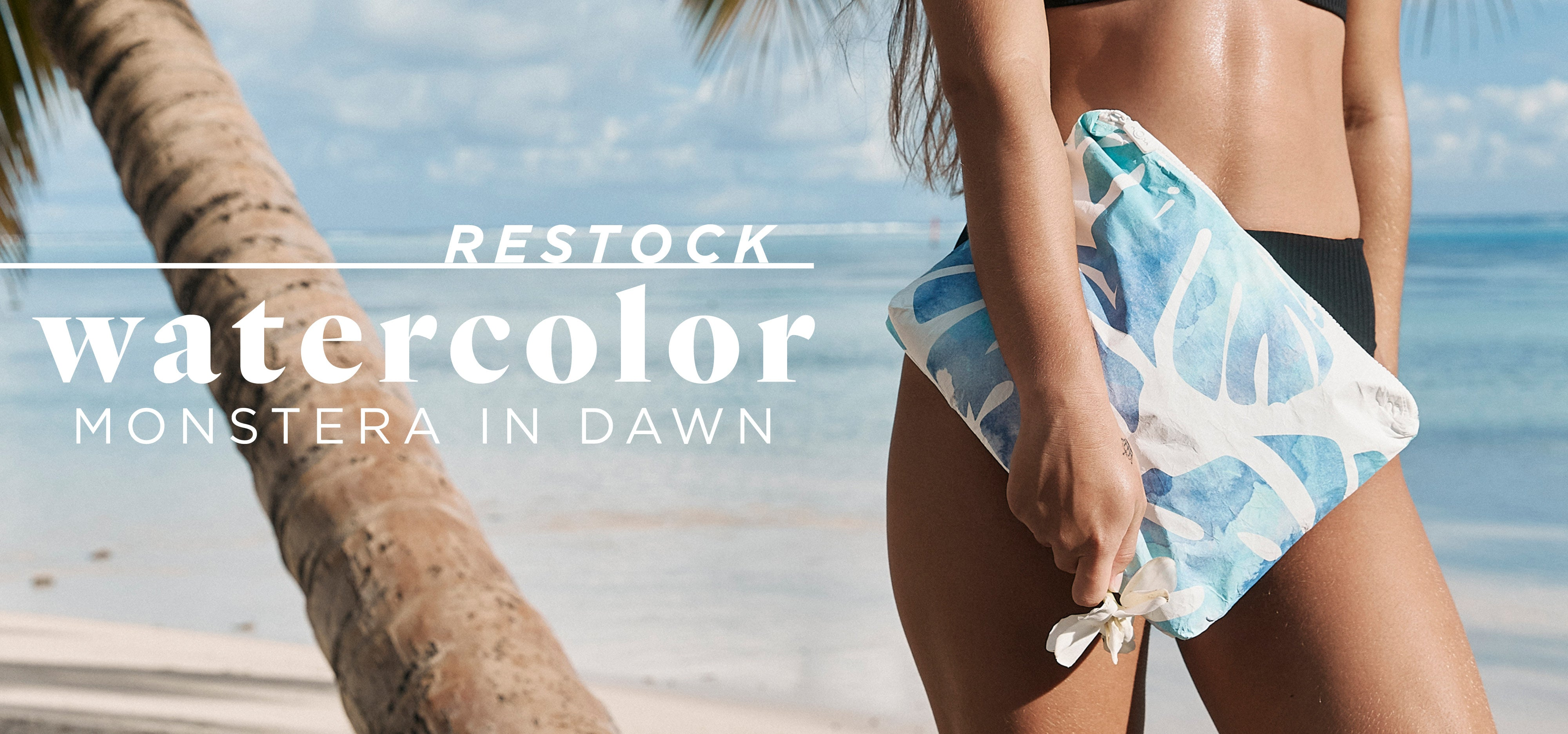 Aloha Collection New Arrivals