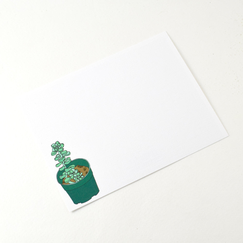 SUCCULENT NOTECARD SET BY MISTPRINT