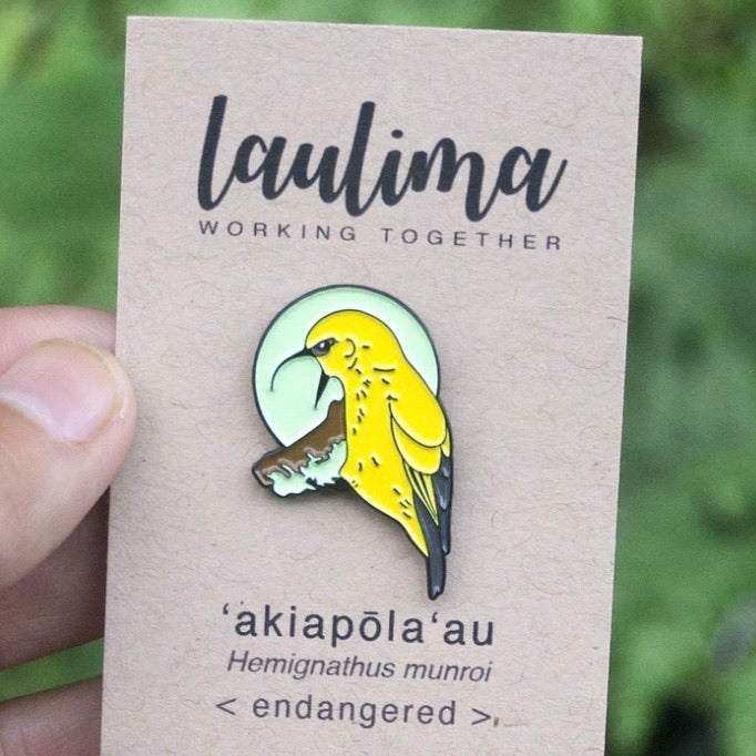 ʻAkiapolaʻau Pin