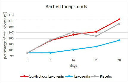 barbell bicep curl results
