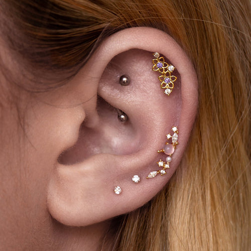 Violet Flower Tragus Helix & Conch Piercing on model - gold