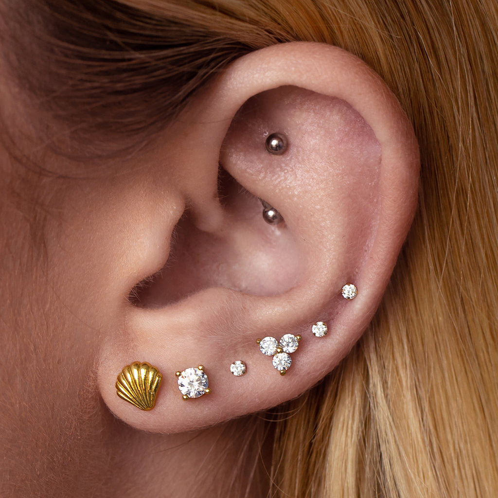 Seashell Stud Earrings on model - gold