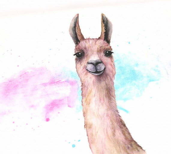 Abby&Me Watercolor Llama Organic Jersey, RAPPORT