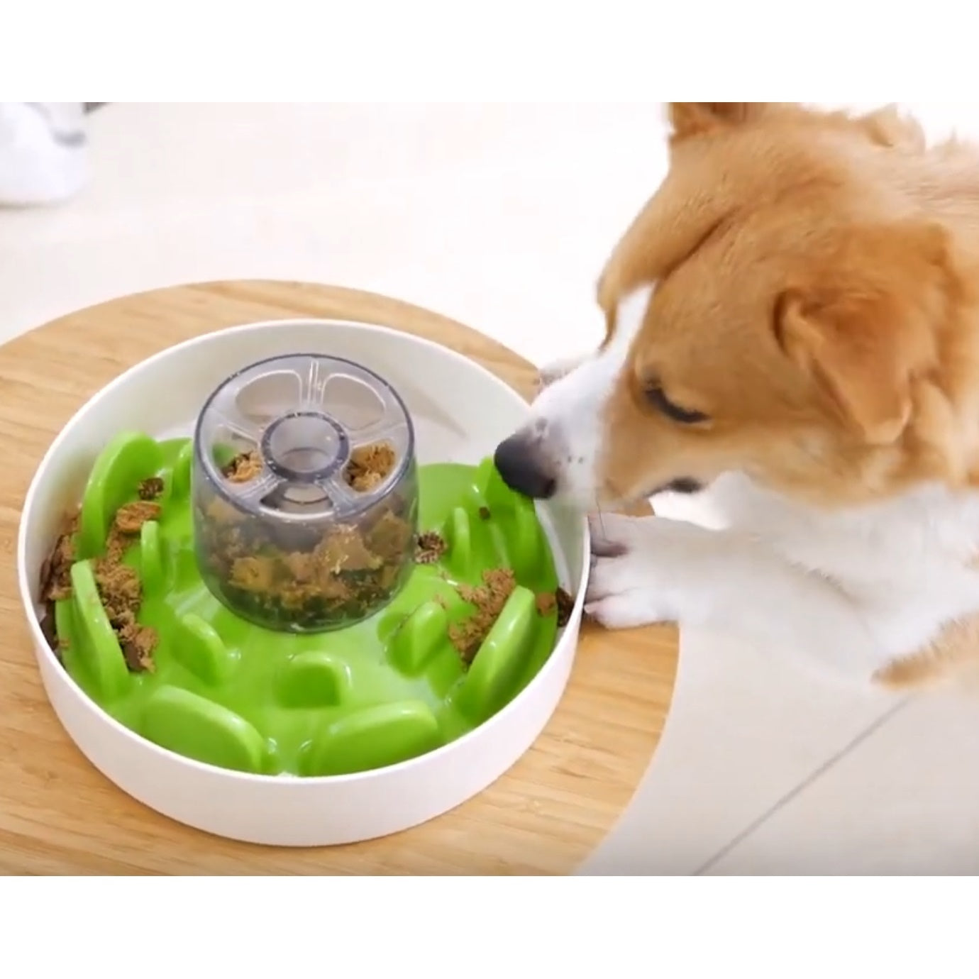 SPIN UFO Maze Interactive Dog Bowl and Slow Feeder