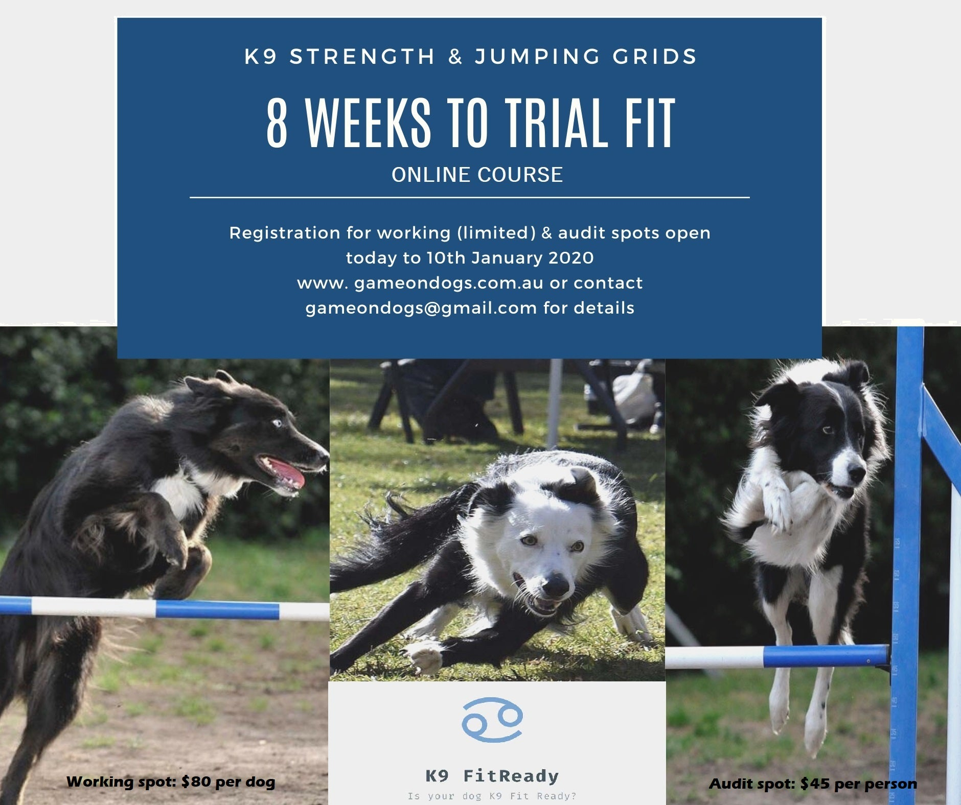 K9 FITREADY 8 WEEKS TO TRIAL FIT FITNESS PROGRAM