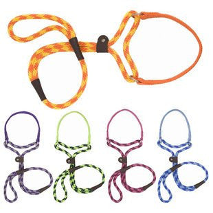 Mendota Dog Walkers & Big Dog Walkers Martingale