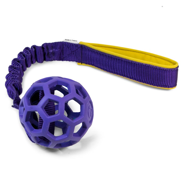 Hol-ee Roller with bungee handle