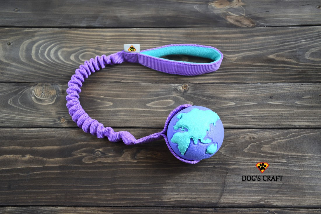 Planet Dog Orbee-Tuff® Orbee Ball with Bungee
