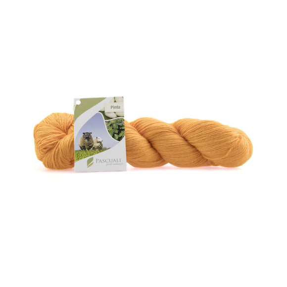 Pascuali Pinta 015 kumquat, Merino & Mulberry silk sock yarn, 4ply, 100g - I Wool Knit