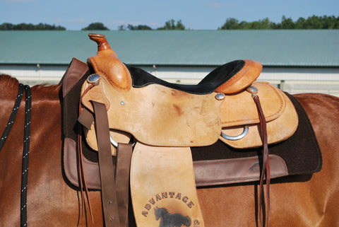 CSI Saddle Pad