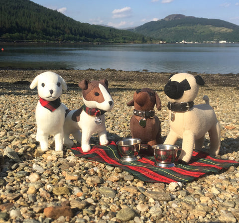 www.doglost.co.uk,dog friendly Scotland, Loch Long, Loch Lommond