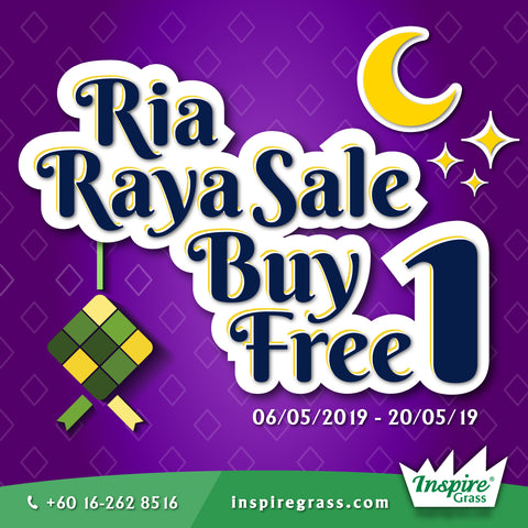 Artificial Grass Raya Sale, Inspire Grass