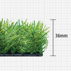 Artificial Grass - Le Meadow
