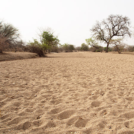 The river bed during the dry season