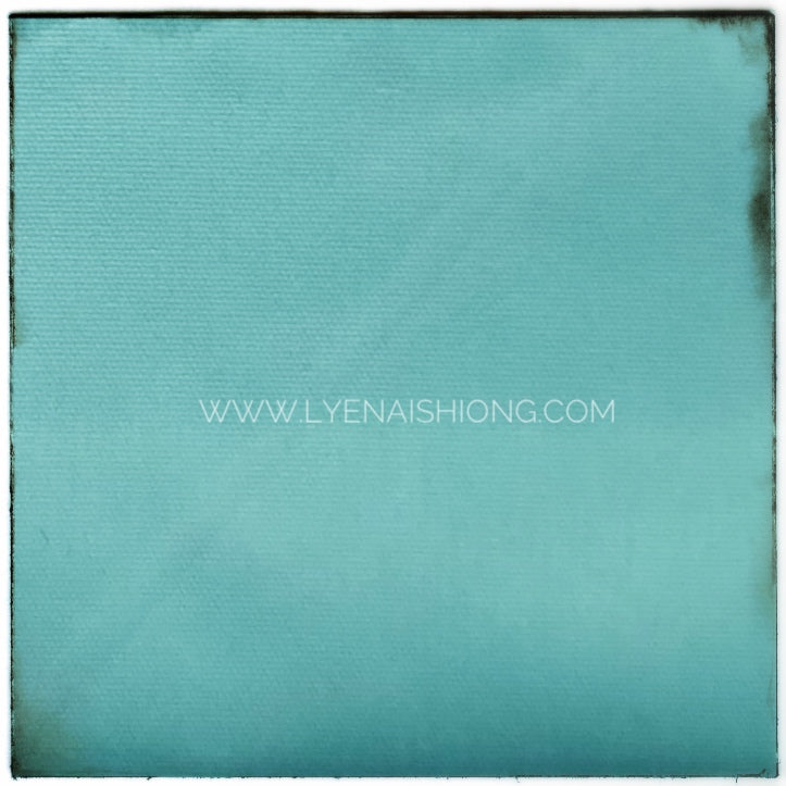 Water-repellent Polyester Taffeta