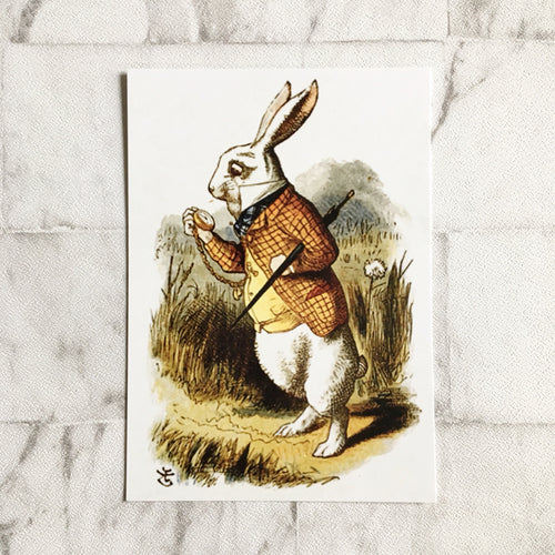 Alice In Wonderland Postcard -  White Rabbit Illustration