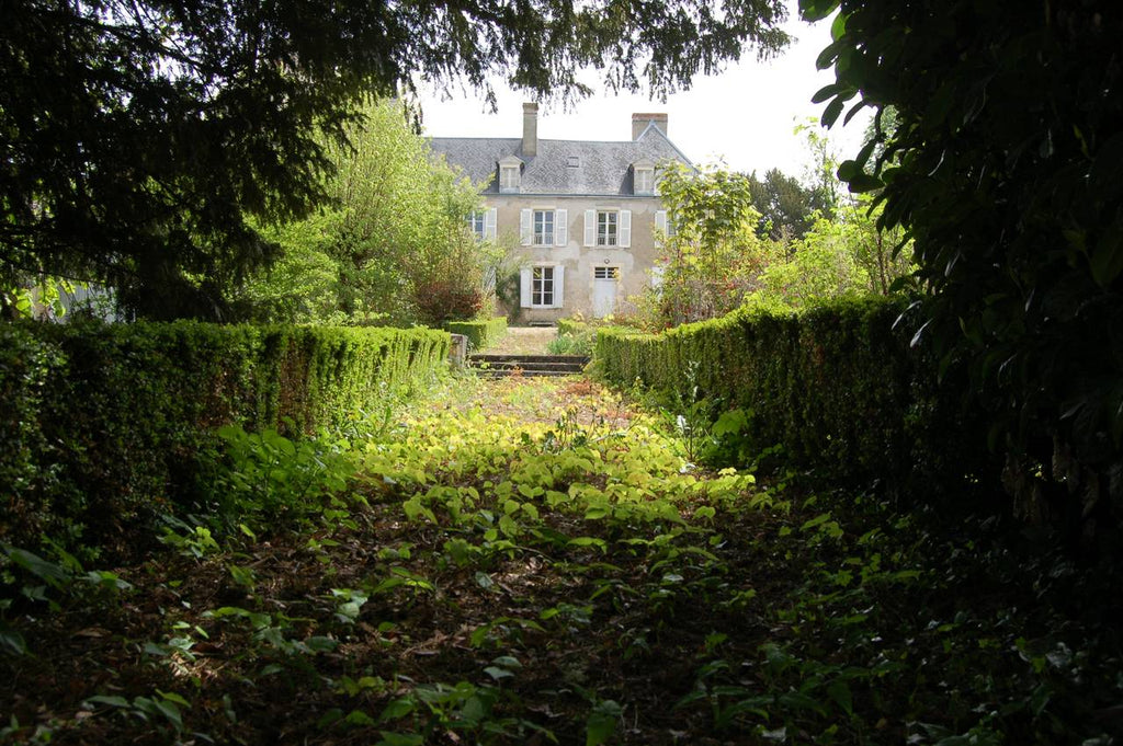 "Here is a photo gallery of our convent ""dans son jus"" - one of the phrases you absolutely need to know if you ever buy an old house in France."