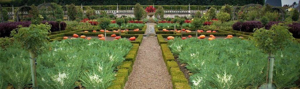 Classical French Garden Design Services By Award-Winning Landscape