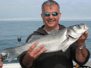 sea bass an introduction to sea fishing