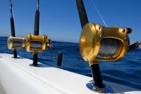 sea fishing introduction @ iwantydirect.co.uk