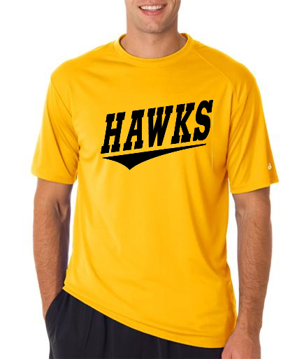 4120- DUBUQUE HAWKS ADULT TEAM JERSEY