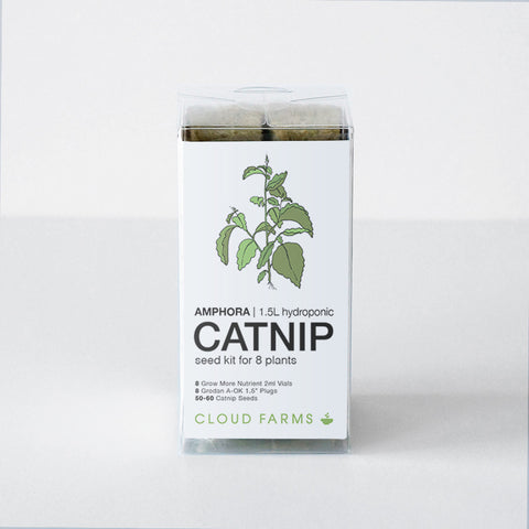 Catnip Seed Kit - 8 Plants (free shipping)