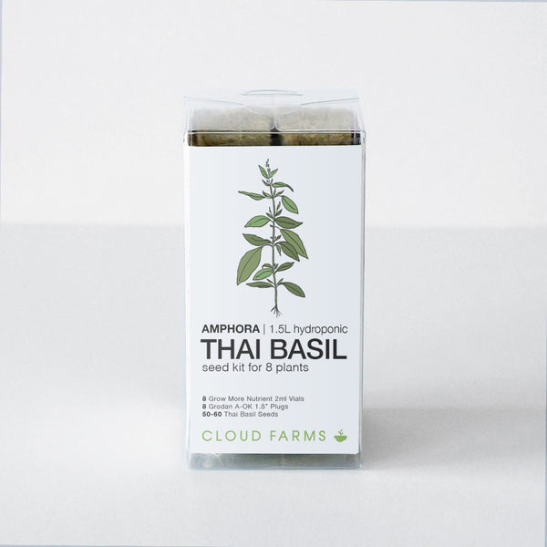 Thai Basil Seed Kit - 8 Plants (free shipping)
