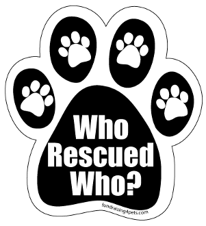 Who Rescued Who? Magnet