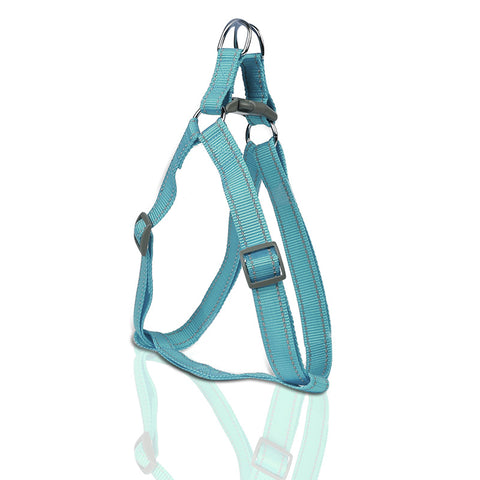 Teal Harness