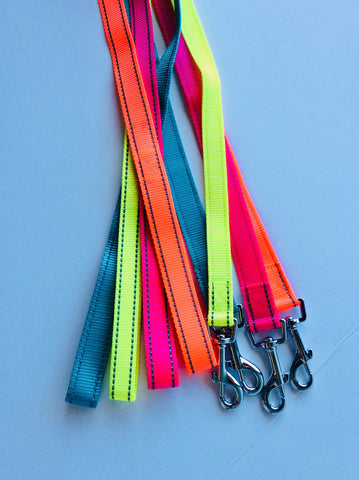 Bright leashes 1""