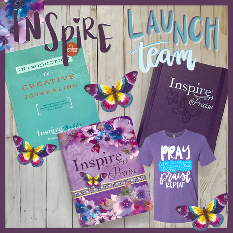 Inspire PRAISE Launch TEAM package!