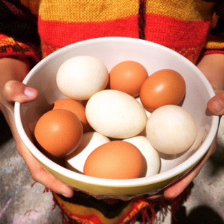 Pasture-Raised Local Chicken Eggs
