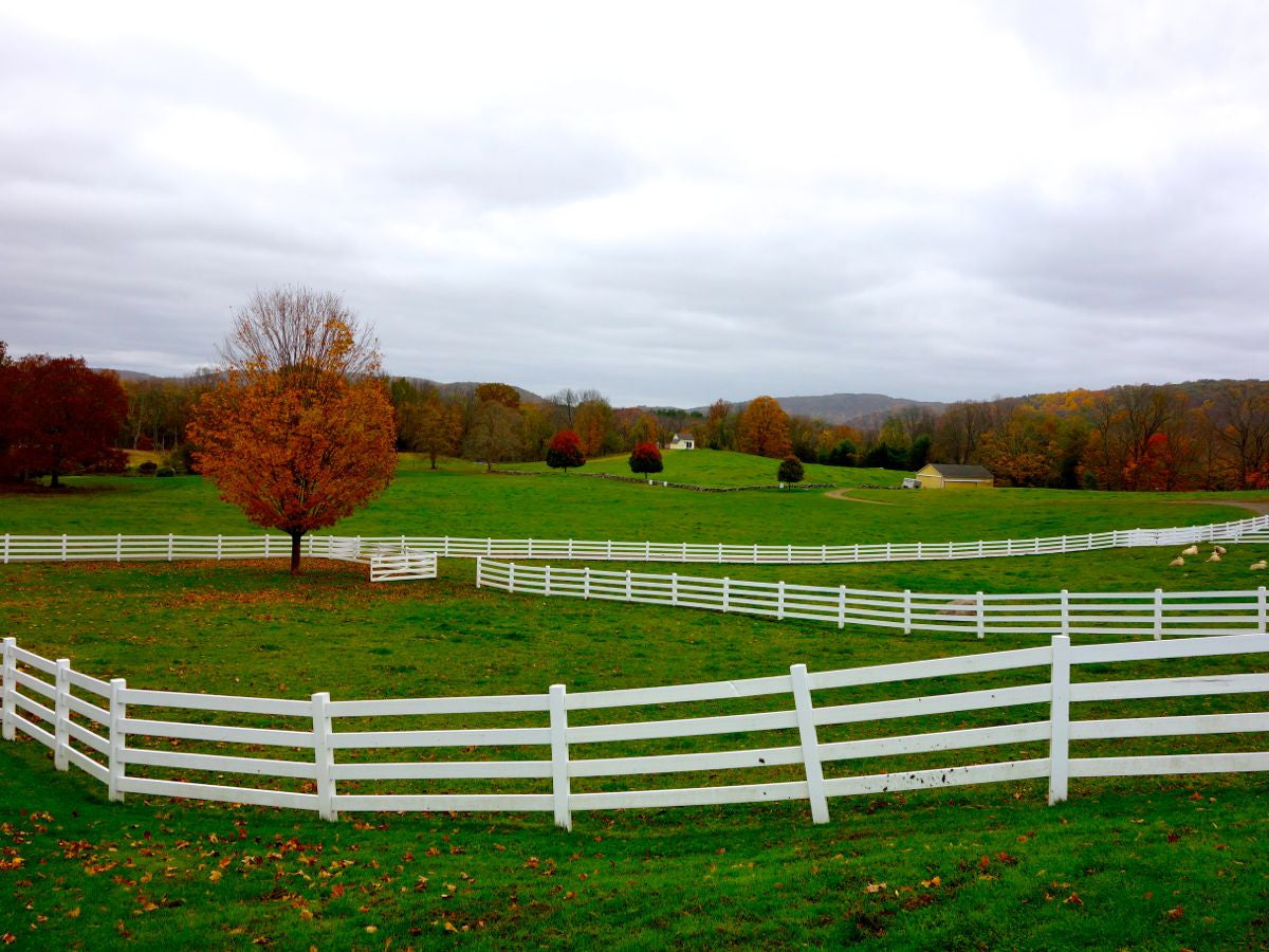 10 Dairy Farms Near NYC