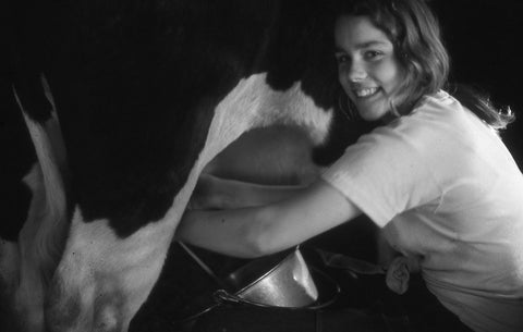 Kristin milking Willy the cow