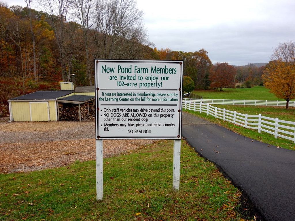 New Pond Farm