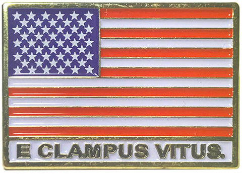 American Flag w/ E Clampus Vitus Pin