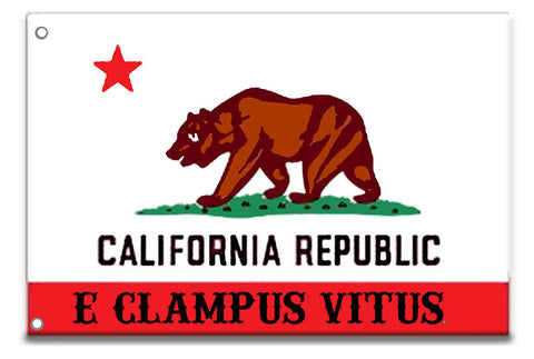 3X5 ECV California Flag