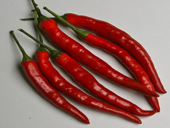 Pepper 'Cayenne Long Thin'
