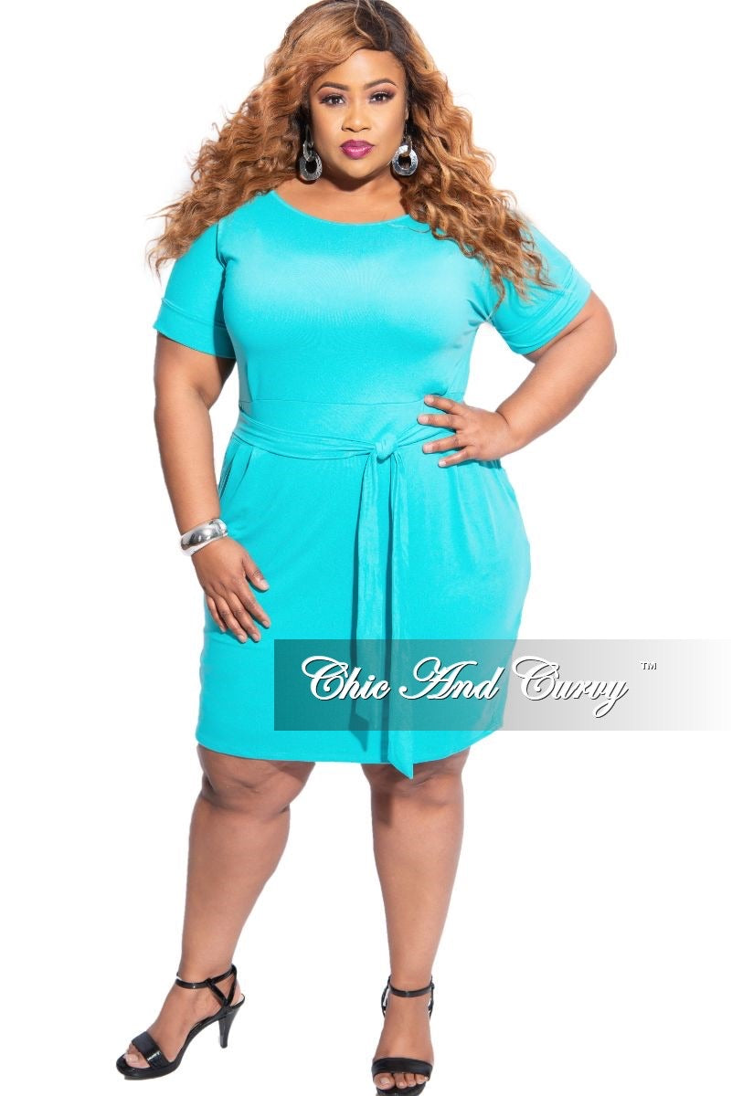 New Plus Size Rolled Sleeve Tie Dress in Ash Mint