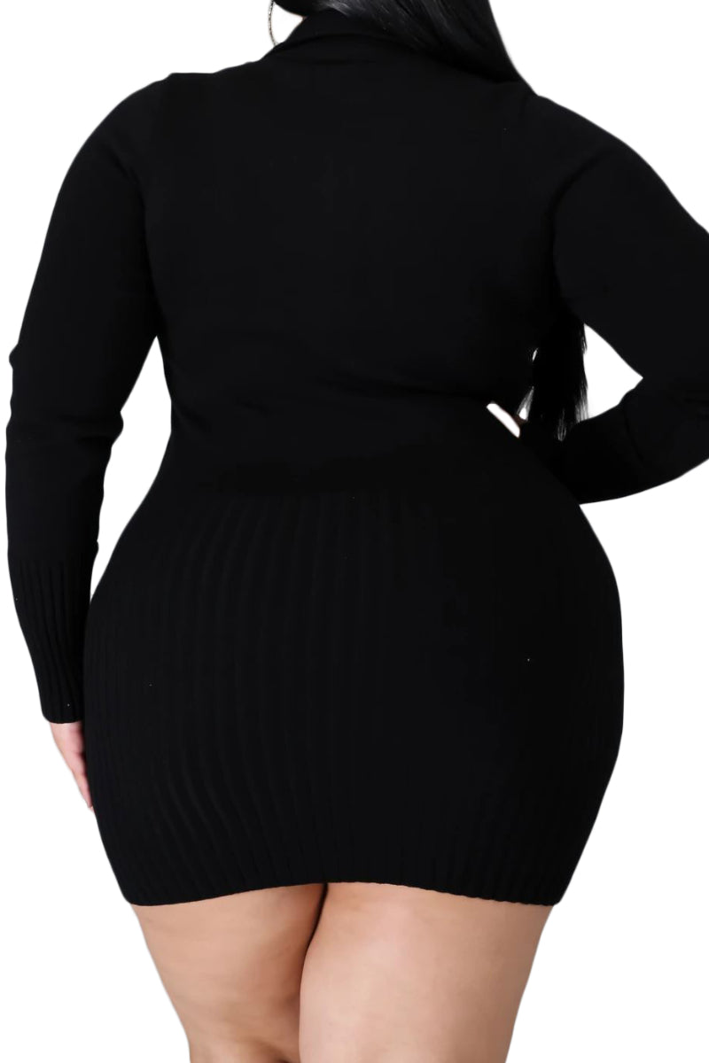 Final Sale Plus Size Long Sleeve Ribbed Knitted Dress/Tunic in Black