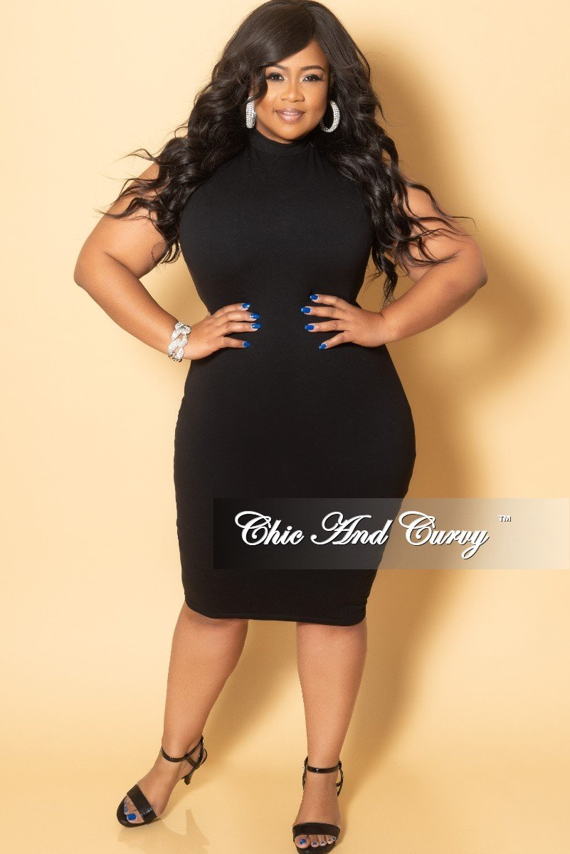 6cd4cffedb46d0 New Plus Size Sleeveless Mock Neck Dress in Black – Chic And Curvy