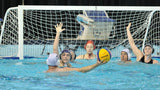 Waterpolo Universitaire 16 ans et plus