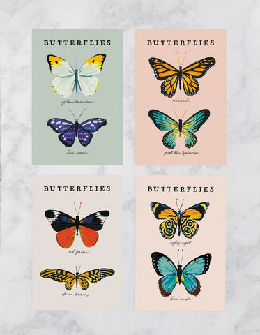 Butterfly Postcards, Set of 8