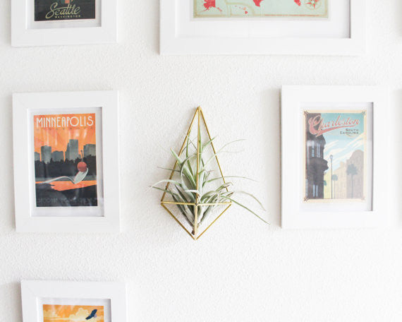 The Original Wall Sconce | Brass Air Plant Holder, Modern Minimalist Geometric Ornament  Ask a Question